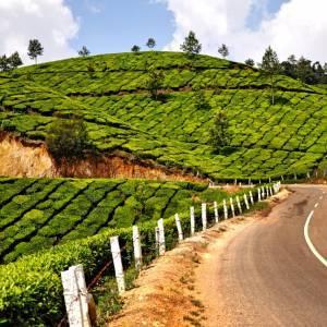Indija - Goa