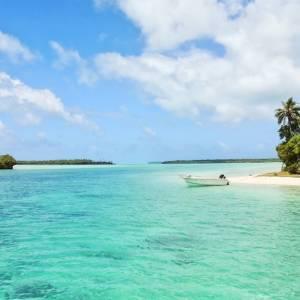 Отправляйся на родину регги – Ямайку