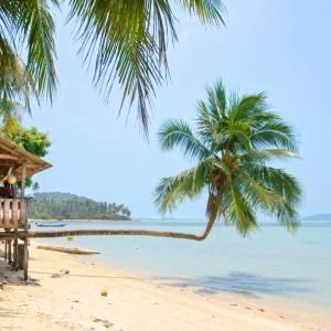 Mедовый месяц на Ямайке